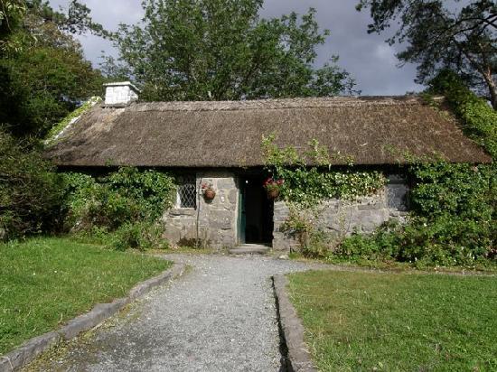 Galway Tour Company: Connemara & Cong