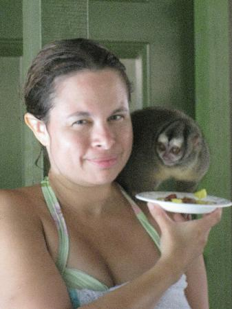 Panama Canal Boat Eco Tour : I fed a night monkey