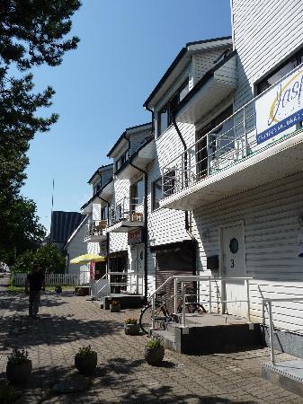 Muuli Hostel 1 : Outside the hostel