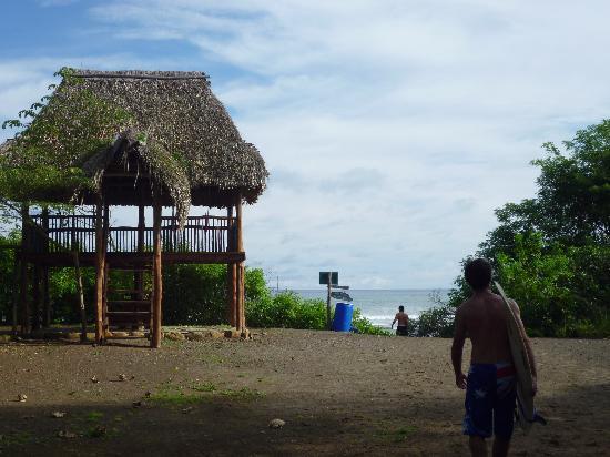 Eco Venao: playa