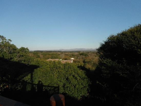Umkhumbi Lodge: Morning view from the Lapa