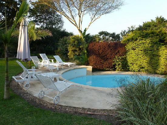 Petite Provence B&B: La piscine
