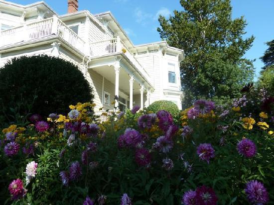 Fairholme Manor: View from the garden