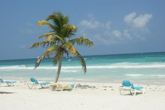 Suenos Tulum: The beach ... gorgeous :)