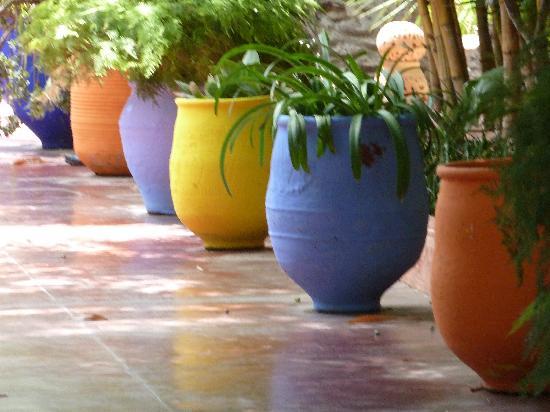 Riad Zolah: Les Jardins de Majorelle