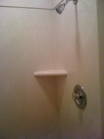 Siesta Motel: Tiny Shower
