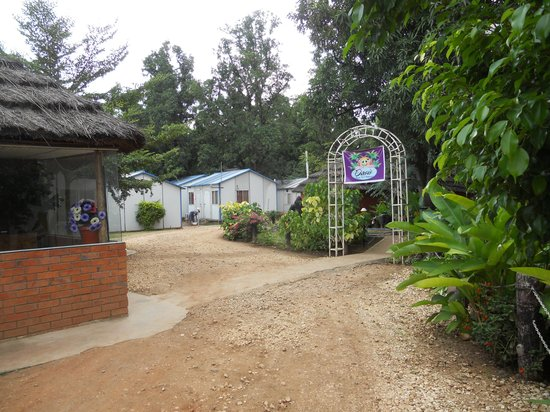 Oasis Camp : Accommodation and reception