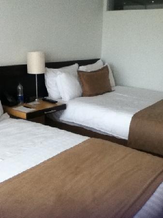 Movich Las Lomas Hotel : Habitación camas twin