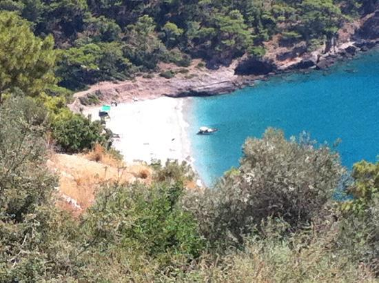 Olive Garden Kabak: View from the Olive Garden
