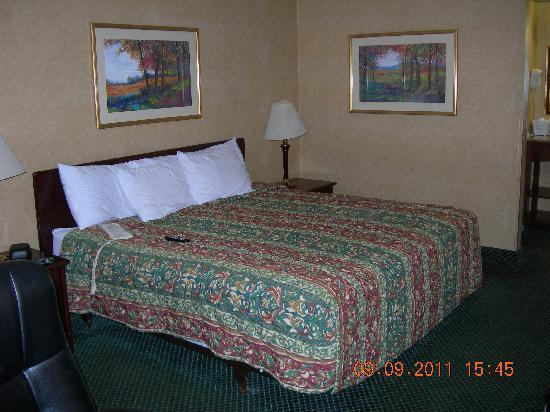 Days Inn & Suites York: Main view of bed