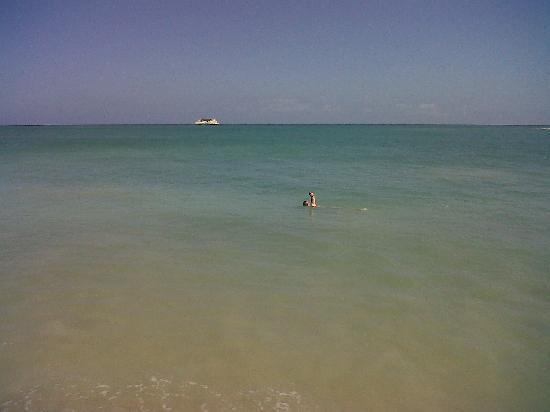 Costa Caribe Beach Hotel & Resort: Playa del hotel