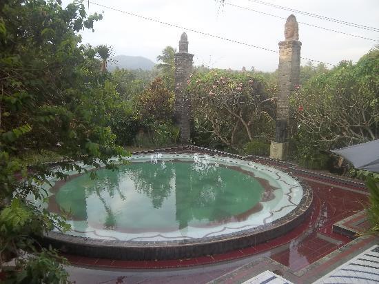 Shankari's Bali Retreat: Swimming pool