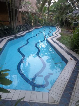 Shankari's Bali Retreat: another swimming pool