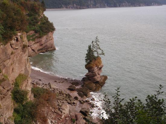 Bay of Fundy: Flower Pot Lookout