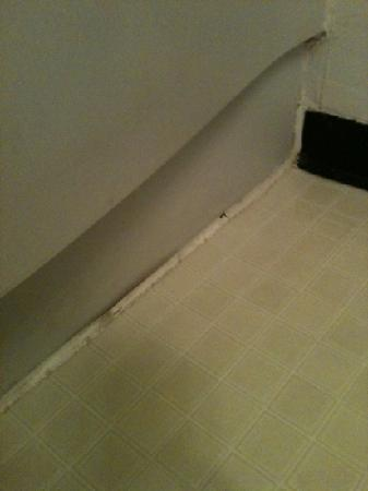 Super 8 Austin MN: Dirty moldy caulk in the bathroom....