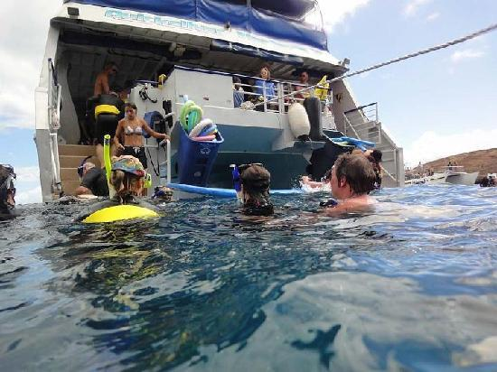 Quicksilver Maui Snorkeling Charters: The pool is open !!!