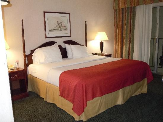 Holiday Inn - Airport Conference Center: Regular King Bedroom
