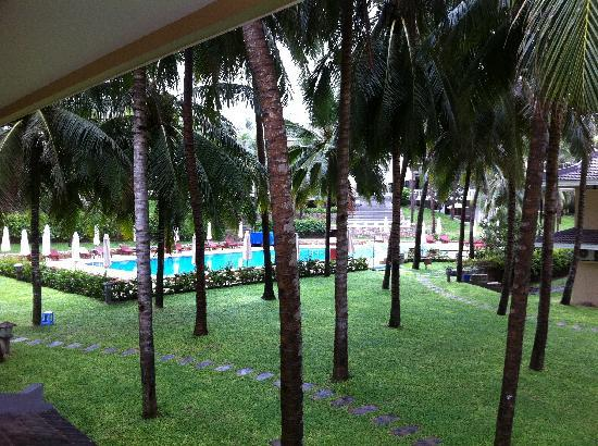 Amaryllis Resort & Spa: Pool view