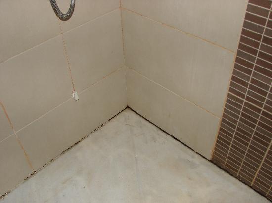 Alia Beach Hotel: Shower 2