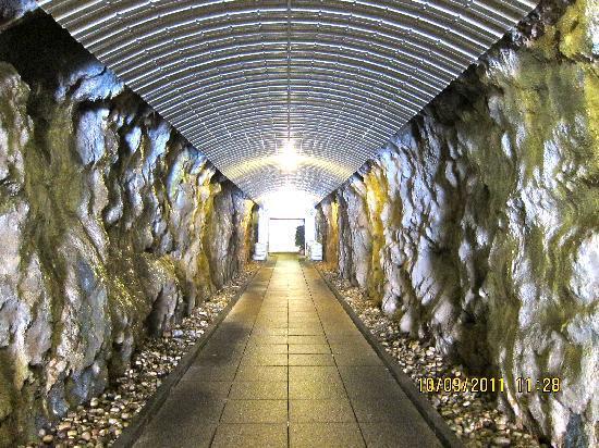 Grand Villa Argentina : Tunnel to the sea side beach