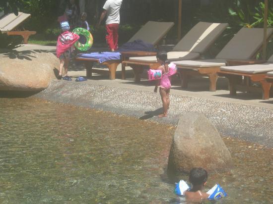 Woodlands Hotel & Resort: Kids in Pool
