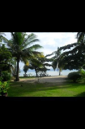 My Phangan Resort : view from eating area
