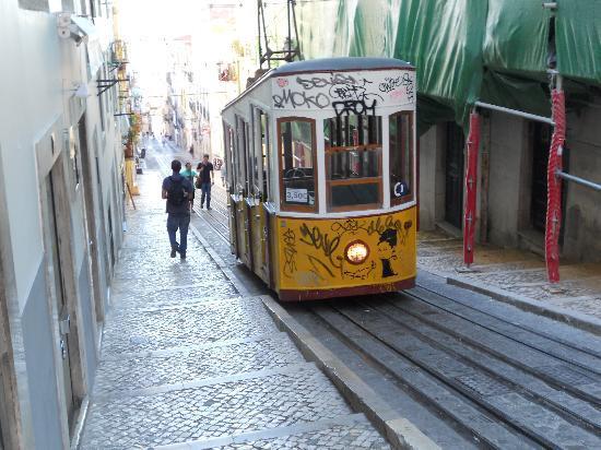 Lisbon Tram & Funicular Network: Acsensor da Bica Fahrt