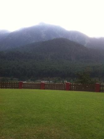 Pahalgam Hotel: view from the room