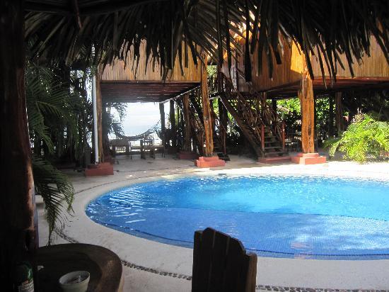 Samara Tree House Inn: Nice Pool Area