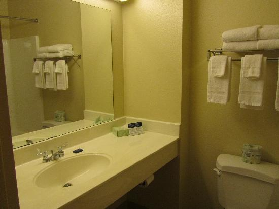 Extended Stay America - Colorado Springs - West : Vanity (King suite)