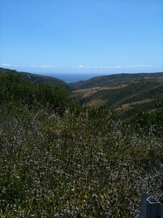 Aliso & Wood Canyons Wilderness Park
