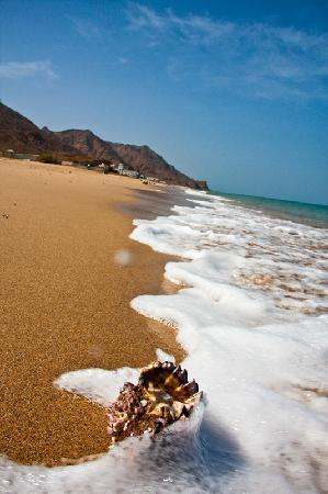 Sifawy Boutique Hotel: Sifah beach