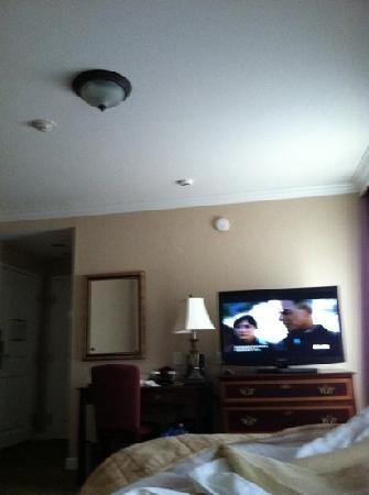 The Wilshire Grand Hotel: tv