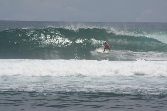 Kon Tiki : almost a classic at Playa Negra