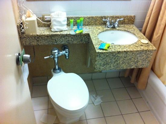 Clarion Hotel: old school bathroom