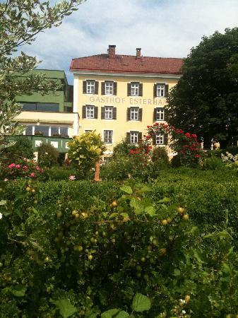 Hotel Gasthof Esterhammer: Esterhammer