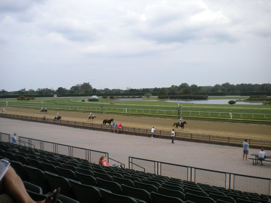 Delaware Park: Ponies Coming Down the Homestretch!!