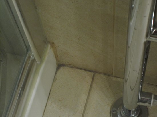 Oriel House Hotel: and manky shower