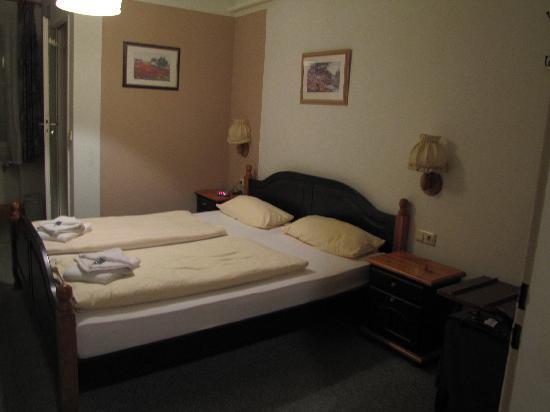 Hotel Brauerei Gasthof Braustuberl: This is one room...