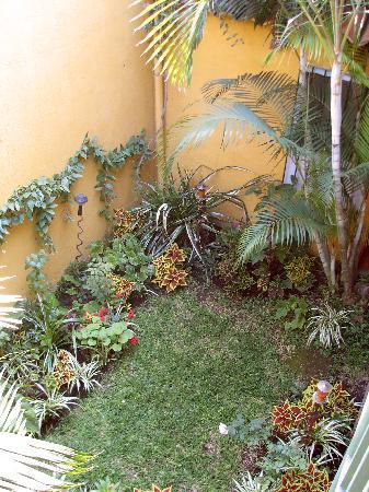 Posada Juma Ocag: Garden