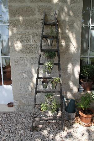 La Ferme de Gigognan : the herb ladder ( I want one )