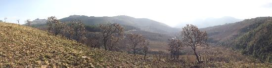 Blyde River Canyon Nature Reserve: panorama