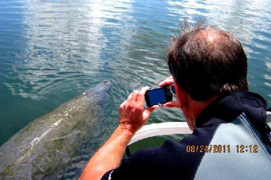 Manatees In Paradise: Even the view from the boat was amazing!