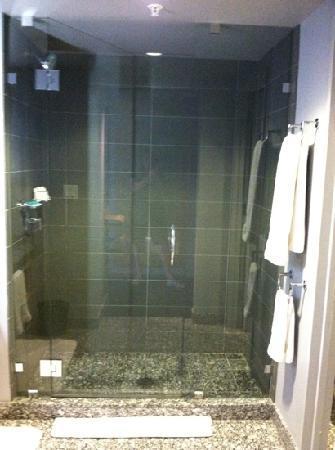 W Boston: Shower.