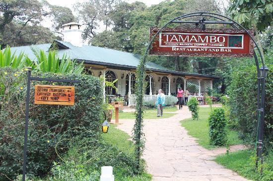 Tamambo Karen Blixen: Entrance