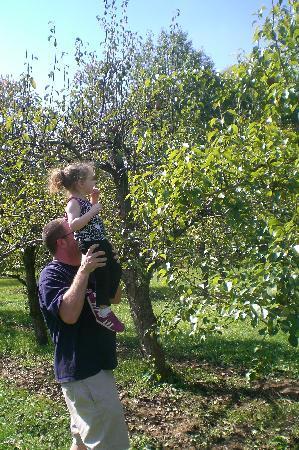 DuBois Farms: apple picking fall 2010