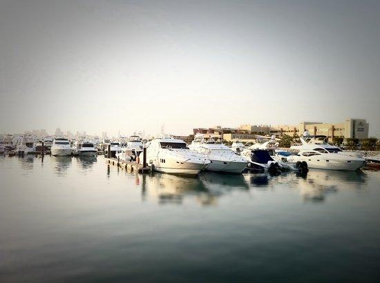 Marina World : marina
