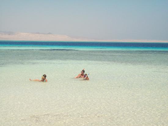 Domina Coral Bay Oasis: isola bianca