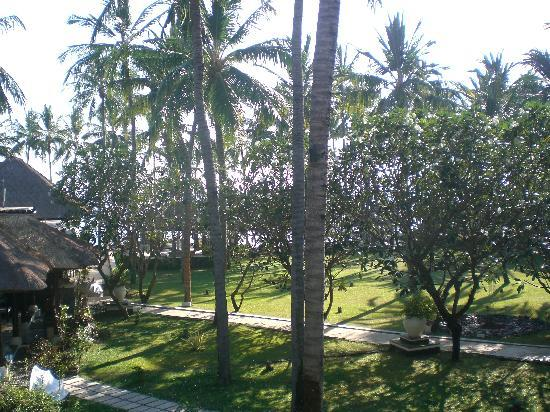 Spa Village Resort Tembok Bali: View from our room