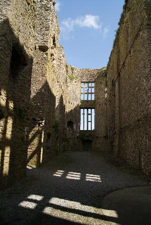Carew Castle: Palas